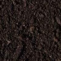 Торф низинный (Тамбовское торфяное месторождение)