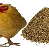 Мука известняковая (крупка) для подкормки с/х птицы