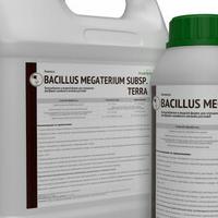Биомасса Bacillus megaterium - жидкая форма